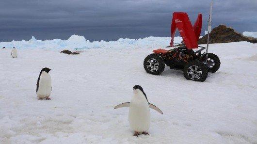 polar-rover1