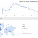 VAWT & Google interes crescut in 2009